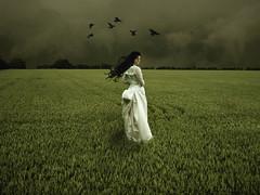 Jane Crow (soleá) Tags: sky woman white green field mystery clouds dark hair mujer corn dress wind eerie brunette weddingdress vrouw solea 100faves 200faves mywinners platinumheartawards