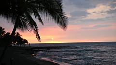 Sunset and Palm Trees (bump) Tags: sunset hawaii honeymoon pacific palmtrees honu thebigisland lightroom konavillageresort