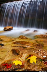 Alta Val di Chiampo - Campodalbero (Enrico Grotto) Tags: longexposure autumn water landscape waterfall 1855mm acqua autunno paesaggio cascata d40 worldbest anawesomeshot theunforgettablepictures platinumheartawards theperfectphotographer theunforgettablephotographer