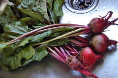 beets in the sink