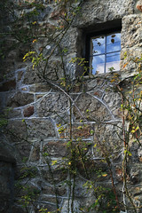"""Lustleigh Window (Frog n fries) Tags: reflection window cottage devon dartmoor naturesfinest lustleigh abigfave """"solofotos"""" hairygitselite"""