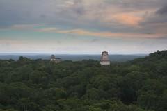 2008-10 Tikal 134 (blogmulo) Tags: travel forest ruins view maya guatemala selva viajes ruinas tikal vista lostcities templeiv temploiv aplusphoto blogmulo ciudadesperdidas