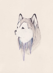 In The Winter it is Impossible to Survive Without a Fire (Sarah McNeil) Tags: art animal illustration pencil painting paper husky drawing exhibition hibbleton