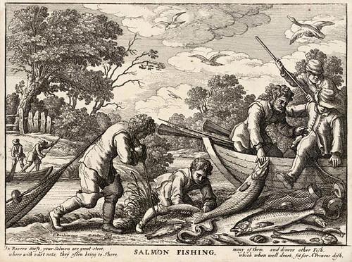 002- Pesca del salmon