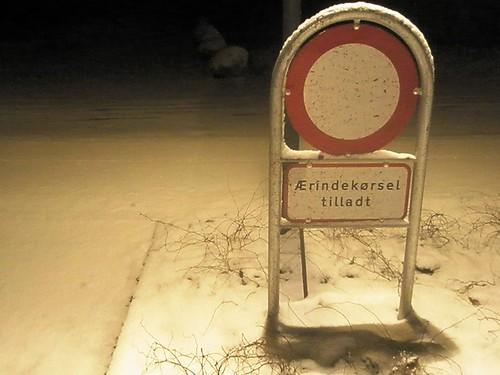 first snow 02.