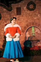Belle (viennamarie1977) Tags: christmas party castle very disney merry cinderellas