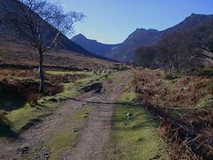 Glen Sannox (Hugh Spicer / UIsdean Spicer) Tags: scotland arran goatfell firthofclyde glensannox cirmhor