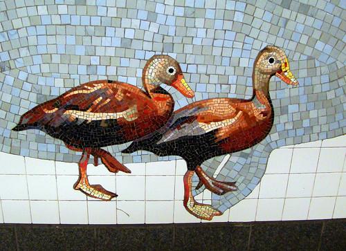 DSC02048 subway tiles ducks