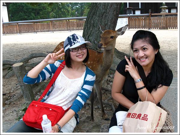090508_02_奈良公園