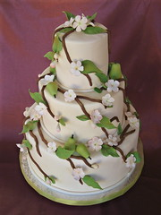 Apple Blossom Cake (springlakecake) Tags: wedding apple cake cherry blossom branches pear seenonflickr temptingtables maranathaconferencecenter