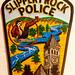 Slippery Police