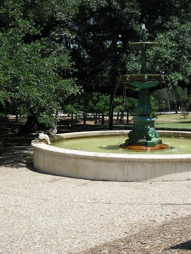 Fountain & ducks in Houston Park
