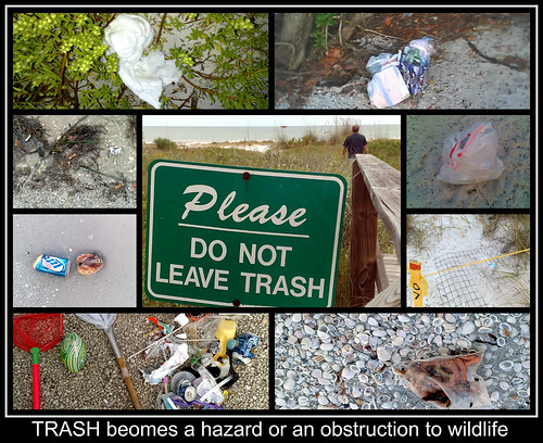 005-CS3min-Trash-captioned