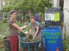 Paula Gifford and Bridget Johnston sorting greens and browns 6 15 11