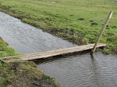 IMG_1771 (kassandrus) Tags: netherlands hiking ijsselmeer waterland holysloot