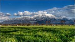 looking for easter bunnys (gregor H) Tags: blue mountain green grass clouds spring rheintal themoulinrouge gams easterbunnys dreischwestern happyeastern