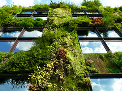 natural building (SANDIE BESSO) Tags: sky cloud sun paris flower reflection green tower nature grass museum architecture moss angle natural perspective seed vert muse quaibranly aplusphoto firsttheearth 1on1architecturephotooftheweek 1on1architecturephotooftheweekmay2008