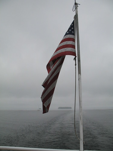 foggy flag