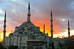 Turkey 524