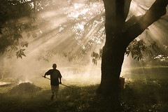 here comes the gardener (.emong) Tags: travel trees light nature silhouette work canon garden landscape farm philippines canoneos20d sunrays pinoy zambales blueribbonwinner sigma18200mm pinoycentric aplusphoto diamondclassphotographer flickrdiamond platinumheartaward outstandingpinoykodakero theperfectphotographer larawangpinoy philippinephotographicsociety lhs4a
