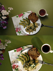 flash or no flash? (joey armstrong) Tags: flowers food breakfast canon eggs comparison edible eos400d joeyarmstrong