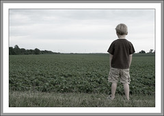 Empty Sky (KentV999) Tags: child farm windmills charlie desaturated soybeans broadmooril bradfordil
