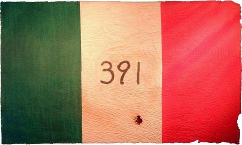 391 flag