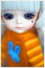 Lang Lang (r e n a t a) Tags: orange macro yellow canon doll purple miel bjd resin resina boneca balljointeddoll latidoll funnybunny lati 16cm