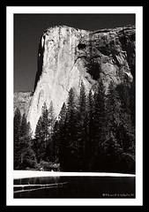 El Capitan (Light Stalker) Tags: bw film blackwhite yosemite granite elcapitan eos3 tmax100 orangefilter tamron2875mmf28 cokinfiltersystem inexplore bwcircularpolarizer