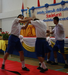 Thai Boys Fighting