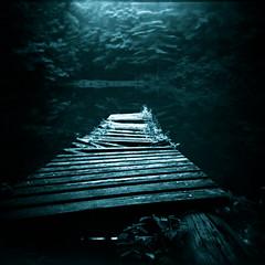 forgotten (j / f / photos) Tags: wood old deleteme5 broken holga lomo dock savedbythedeletemegroup saveme10 planks decayed holga120cfn saveme11 ilfordfp4125
