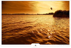 Vast Lake Territory (Gert van Duinen) Tags: trees red sky orange brown lake bird nature water netherlands yellow clouds rural landscape scenery digitalart lakeside romantic 2008 landschaft tranquil friesland landschap naturescape themoulinrouge explored dutchartist abigfave nikond80 landschaftsaufnahme frisianlakes cresk tokinaatx124pro gertvanduinen hoyapro squarecresk