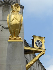 golden owl and clock leeds (jasonbilbo) Tags: uk blue england sculpture jason bird clock museum square gold golden town hall interesting time market yorkshire leeds millenium philosophy owl flies civic flys jaon armouries flyes argonoughts
