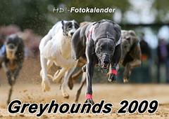 Greyhounds 2009 - Titel Dukaten Rennen Sachsenheim