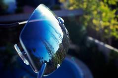 Reflective..By Nature. (SonOfJordan) Tags: light reflection nature sunglasses canon amman jordan colourful xsi 450d  samawi sonofjordan shadisamawi  wwwshadisamawicom