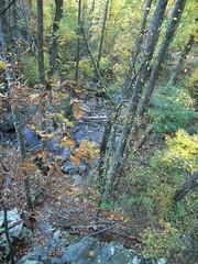 trees (aluminum ghost) Tags: nature virginia hiking autumnleaves waterfalls shenandoah nationalparks naturephotography shenandoahnationalpark rockpiles lukeweichmann