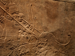 Assyrian Relief Carving - King Spearing Lion2 (Radicaladam) Tags: old uk england london art history stone museum ancient britain relief britishmuseum carvings mesopotamia lionhunt assyria artefacts assyrian