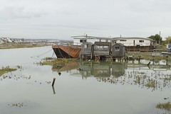 2008-10-14~275 (Innis McAllister) Tags: river houseboat adur mcallister innis innismcallister