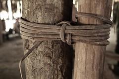 amarramos las columnas, no hace falta el metal (cavernicols) Tags: colombia belga nicolas van nico belgica felipe historia rodriguez colombo cronica fotografo documentalista documental reportaje cavernicola hemelrijck hemelryck