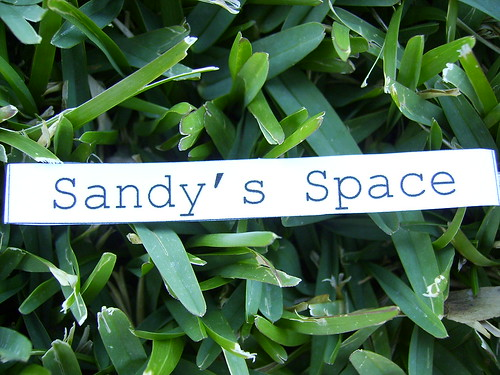 Sandy's Space Won!
