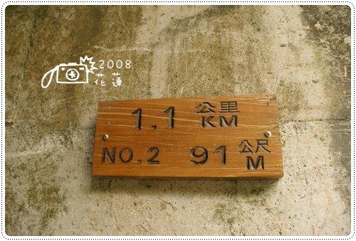 白楊步道 (4)