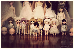 The tiny ones (r e n a t a) Tags: blue yellow canon doll dolls cara tan may hobby sd ciel coco tiny heads miel lea bjd boneca yoko lumi fairyland addiction familypicture lami miyu msd noella tf bluefairy balljointeddoll latidoll coleo mnf pocketfairy f02 f01 30cm 12cm 60cm lati narae musedoll tinyfairy yisol supia 43cm minifee 16cm dollga narindolls limitedcatversion limitedhkelf limitedrabbitversion