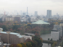 Imperial Palace Fall Leaves