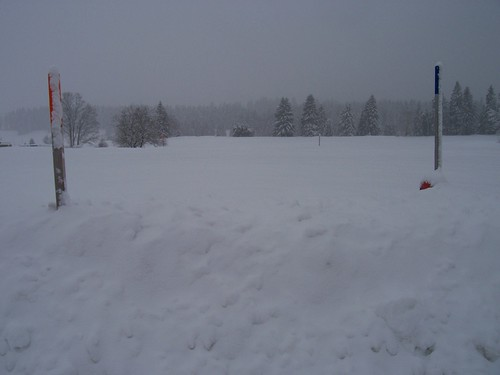 We have a whole lotta snow and it may snow for a few more days!