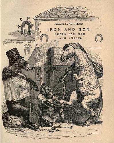 008-Vida y opiniones filosoficas de un pinguino-calzado para hombres y bestias