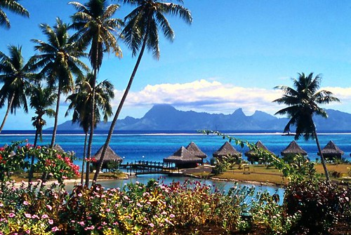 Oceania Ozeanien Tahiti por doc.holiday41(Off for one week).