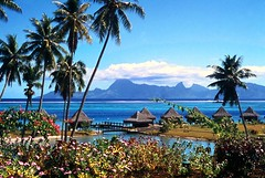 Oceania Ozeanien Tahiti (doc.holiday41) Tags: trip travel sea sky clouds coast pacific south himmel wolken viagem tahiti ferien vacaciones ferias reise kste moorea oceania palmen pazific sagittaria sdsee otaheite windwardislands ozeanien hongkongphotos kartpostal franzsischpolynesien kinggeorgeisland ilesduvent pallms ilesdelasocit gesllschaftsinseln