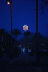 DSC_0305 (debbyk) Tags: moon 2009 ridgecrest march10