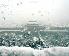 Forbbiden City in a Blizzard (ShanLuPhoto) Tags: china autumn trees winter snow fall beijing   jingshanpark     forbbidencity bilizzard loolooimage