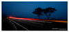Equation of Motion. ([ Kane ]) Tags: road longexposure morning blue trees red white motion tree car fog dawn lights australia qld queensland kane warwick gledhill 50d lightsinthefog kanegledhill wwwhumanhabitscomau kanegledhillphotography